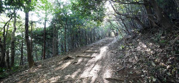 http://www.camp-outdoor.com/tozan/takaosan/img/2P1030465.jpg